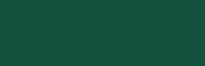 Travok logo dark